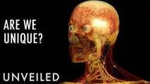 What's So Special About Human Beings? | Unveiled