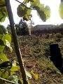 Le forage d'un puits produit des effets inattendus à Avedji ( Commine Athiémé BÉNIN)