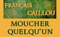 Français caillou / Définition du jour : Moucher quelqu'un