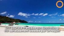 Une touriste française attaquée par un requin  aux Seychelles