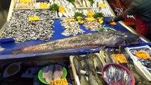 Dev yayın balığı ilgi odağı oldu