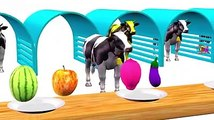 Learn Colors with Fruits 3D Cows For Kids
