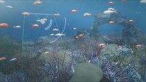 Underwater loudspeakers could help boost coral reef recovery