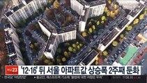 '12·16' 뒤 서울 아파트값 상승폭 2주째 둔화