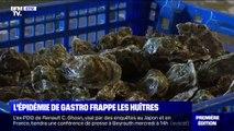 Une épidémie de gastro-entérite touche aussi les huîtres dans le Morbihan