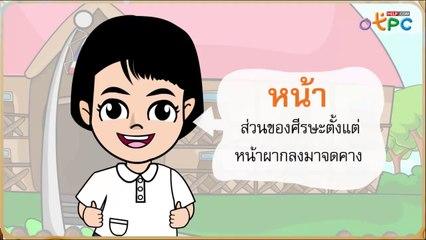 สื่อการเรียนการสอน ไปโรงเรียน ป.1 ภาษาไทย