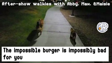 The Impossible Burger is impossibly bad for you - after show walkies with Abby and Max and Maisie