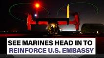 Watch Marines gear up to reinforce U.S. Embassy in Baghdad - Newsbreak