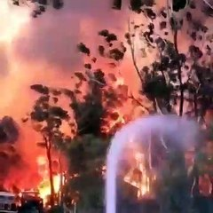 Terribles images du feu Australien