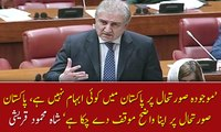 Foreign Minister  Shah Mehmood Qureshi  speaking in the Senate
