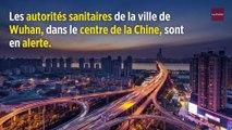 Chine : un mystérieux virus fait trembler l'Asie