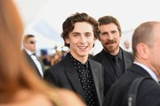 Timothée Chalamet in Talks to Play Young Bob Dylan