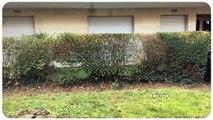 A vendre - Appartement - Fontenay-aux-roses (92260) - 1 pièce - 27m²