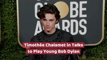 Does Timothée Chalamet Look Like Young Bob Dylan