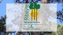 Scierie Ribeyre, exploitation forestière, sciage et séchage, traitement autoclave dans les Landes