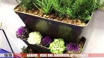 CES de Las Vegas : Agrove, une jardinière connectée made in Aix-en-Provence