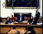 Roma - Alitalia, audizione Ministra De Micheli (07.01.20)