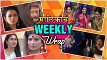 Top 10 Marathi Entertainment News | Weekly Wrap | Rasika Sunil, Subodh Bhave