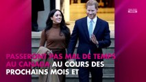 Meghan Markle et le prince Harry : vers un possible déménagement au Canada ?