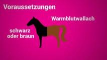Kickls Reiterstaffel erklärt