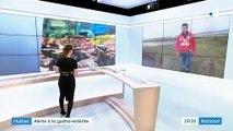 Charente-Maritime : les huîtres contaminées par le virus de la gastro-entérite