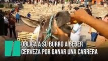 Obligan a un burro a beber cerveza por la nariz como premio por ganar una carrera
