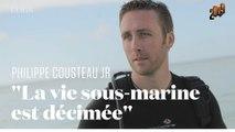 Le cri d'alarme du petit-fils du commandant Cousteau pour sauver les océans