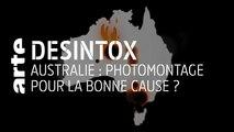 Australie : photomontage pour la bonne cause ? | 09/01/2020 | Désintox | ARTE