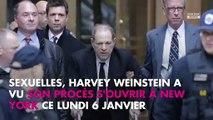 Harvey Weinstein : son ancien chauffeur à Cannes témoigne
