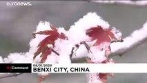 El noreste de China se cubre de un espectacular manto de nieve