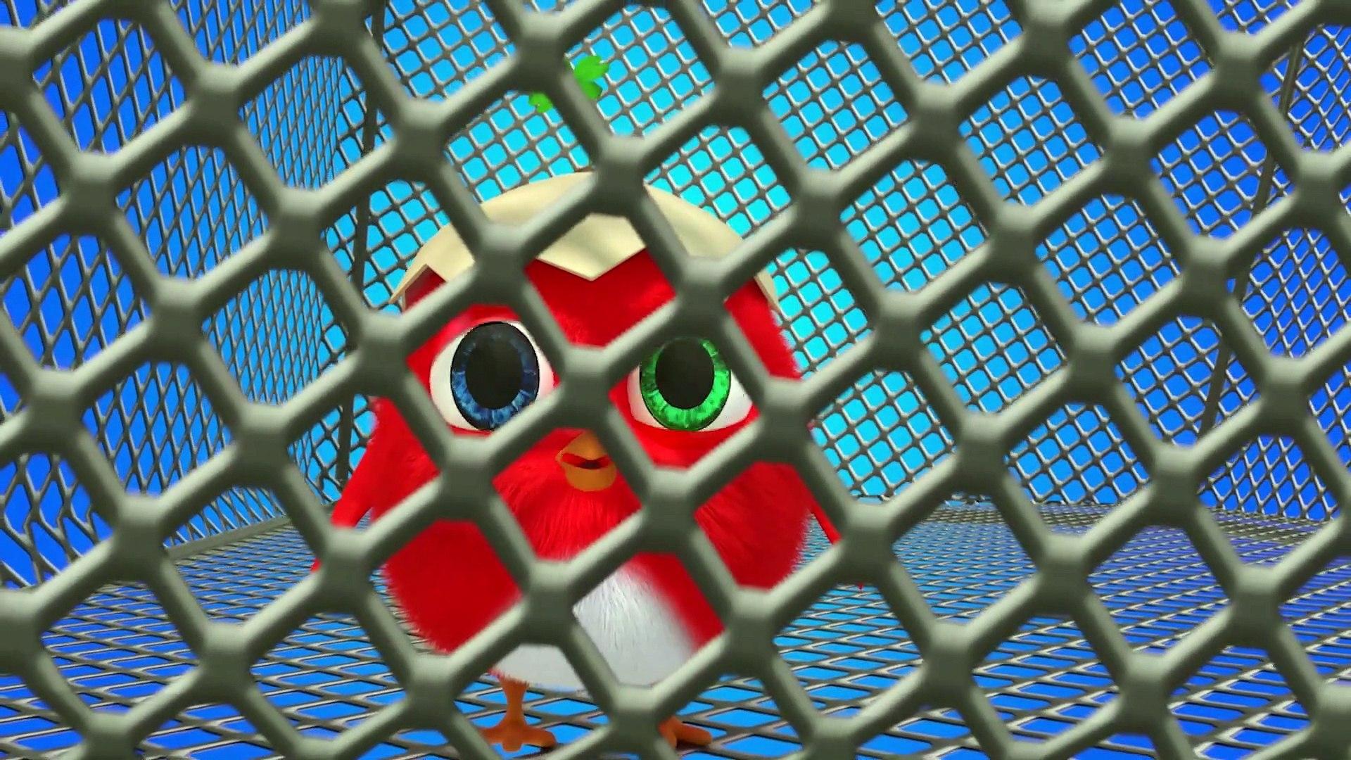 Roter Kuckuck - Cartoon Für Kinder 2019 - Deutsch Kinderserie Neue Folgen #5