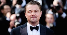 Leonardo DiCaprio verse 3 millions de dollars avec sa fondation pour aider l'Australie contre les incendies