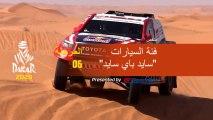 داكار 2020 - المرحلة 6 (Ha'il / Riyadh) - ملخص فئة السيارات  / سايد باي سايد