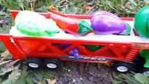 Plastic transportation car carry fruits and vegetables to grass