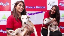 Pooja Hegde To Host A Unique Food Donation For Animals