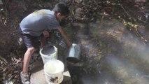 Honduras afronta la peor sequía en los últimos años