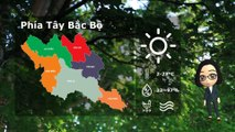 12/01/2020 Vietnam weather forecast