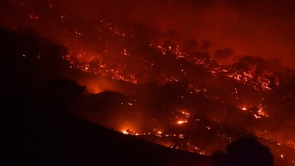 Australians Urged To Get Out Because Of Dangerous Bushfires