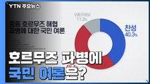 """리얼미터 """"호르무즈 해협 파병, 찬성 40% vs 반대 48%"""" / YTN"""