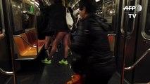 New York: No pants? No problem