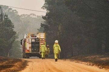Bomberos americanos llegan a Australia a combatir incendios
