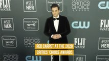 Red Carpet at the 2020 Critics' Choice Awards