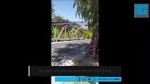 ¡Peligro, puente! Cómo cruzar caminando el de Camino Belgrano y 424 y no caer en el intento