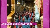 Réunion de crise d'Elizabeth II : comment Meghan Markle pourra y participer malgré son retour au Canada