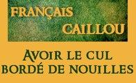 Français caillou : Avoir le cul bordé de nouilles