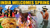 Pongal, Makar Sankranti, Lohri, Maghi: India celebrates the onset of Spring | OneIndia News