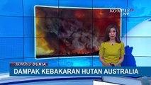 Pasca Kebarakan Hutan Dahsyat di Australia, Ini Dampaknya...