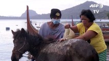 Taal volcano: Villagers rescue horses via boats