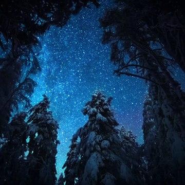 Night on Earth Trailer