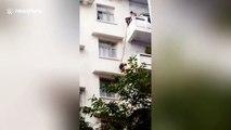 Une mamie suspend son petit fils à une corde pour récupérer son chat (Chine)